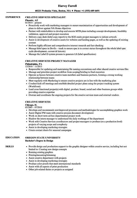 wonderful international standards resume format magnificent international standard resume sle photos