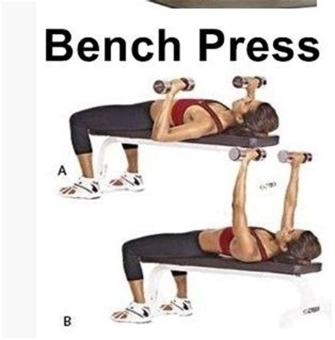 bench press exercise at home chest press exercise at home www pixshark com images