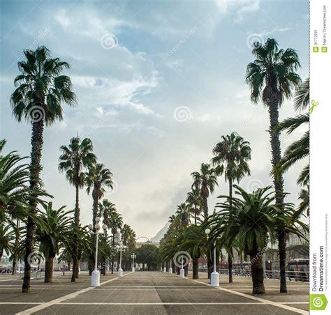 promenades dans la barcelone promenade in barcelona stock image image of relax european 31777031