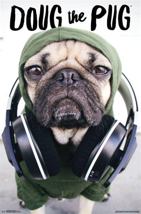 doug the pug website doug the pug headphones
