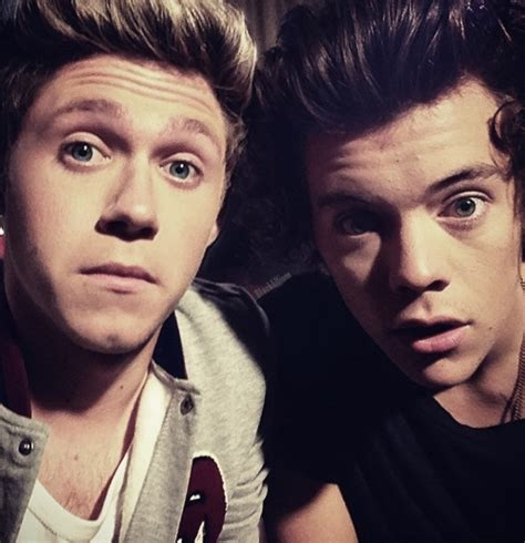 Niall Horan And Harry Make The Most Of The Sun On Their | harry styles images narry wallpaper and background photos