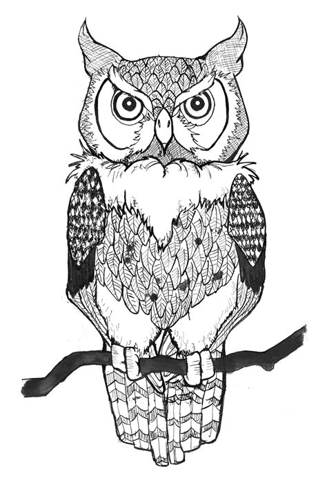 Owl Outlines Drawings by 301 Moved Permanently