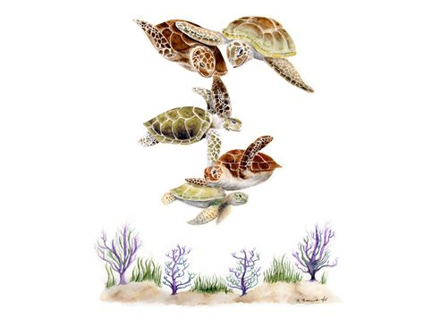sea turtle family nursery decor turtle by