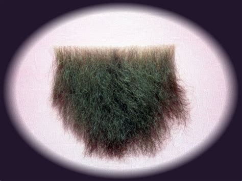 what is the latest pubic hair style evolution of pubic hair newhairstylesformen2014 com