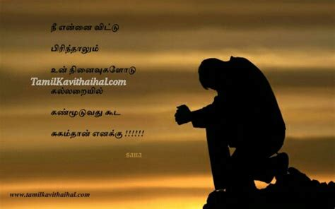 tamil love feeling photos for boys propose with red rose wallpaper auto design tech