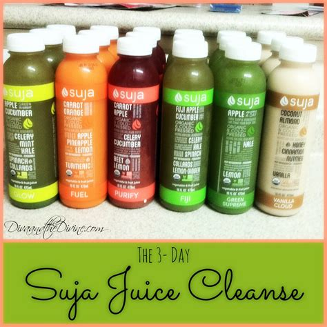 1 Day Juice Detox Plan by Suja Juice Cleanse Day 1 And The