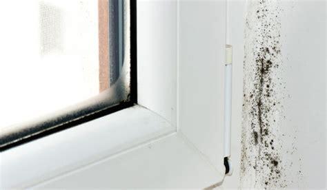 fenster beschlagen fenster beschlagen innen kondenswasser vermeiden