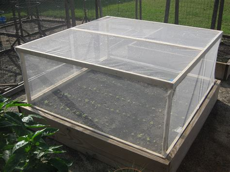 Raised Bed Pest Cover   Vegetable Gardener