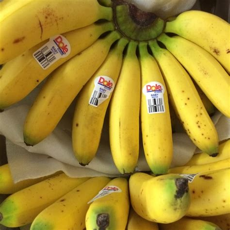 tiny banana name tiny banana name 28 images what would be that one