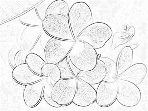 dibujos para pintar flores en tela imagui guias de rosas pintadas en telas imagui