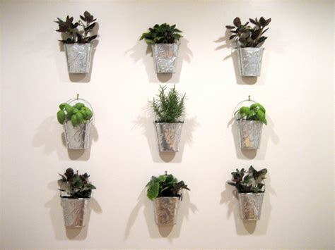 indoor herb garden wall guest project make a kitchen garden wall