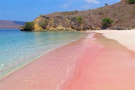 Find In The Philippines 187 Travel Pink On Sta Island Zamboanga Named Among The World S Best Beaches