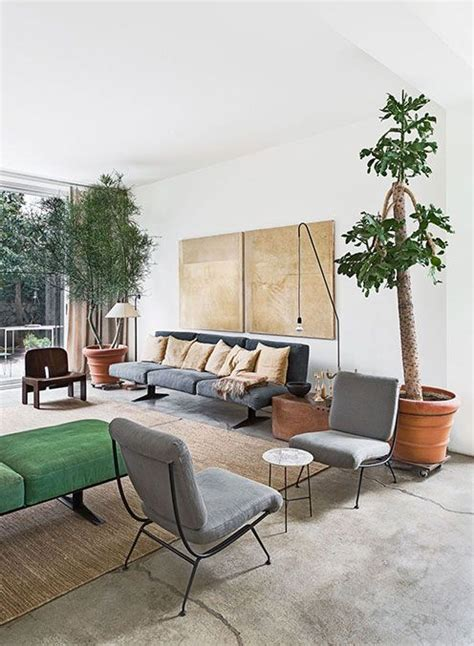 home decor plants living room design plants and home decor ideas on
