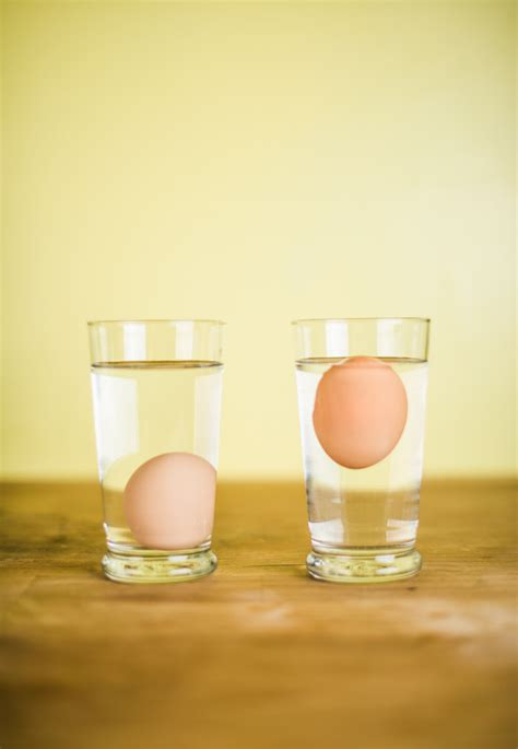Do Eggs Float Or Sink by Do Bad Eggs Float Or Sink Someday I Ll Learn