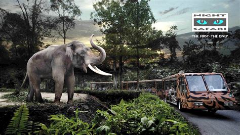 5 Safari Stuff To See by 5 Things We Missed Doing In Singapore That You Must Try