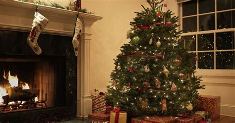 how to keep your real christmas tree fresh until december