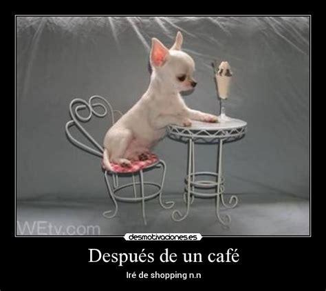 imagenes graciosas tomando cafe despu 233 s de un caf 233 desmotivaciones