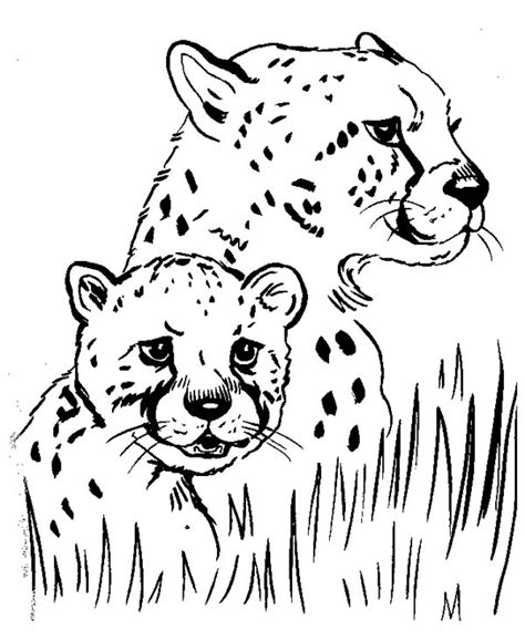 free coloring pages of baby cartoon cheetah 20 cheetah coloring pages coloringstar