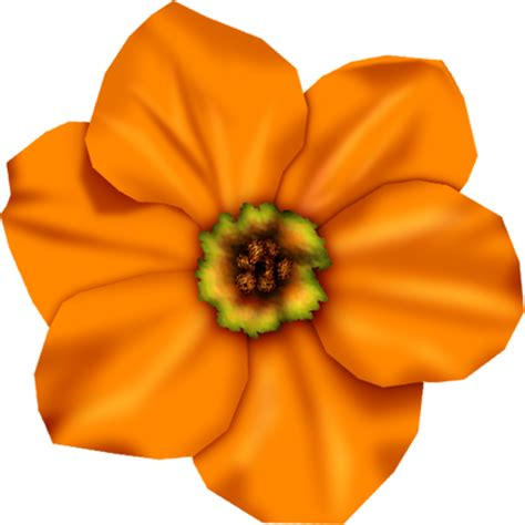 imagenes flores naranjas recursos infantiles flores naranjas png