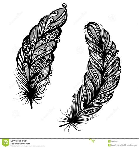abstract feather bird stock vector image 38920257