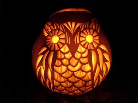 best 25 owl pumpkin ideas on pinterest owl pumpkin