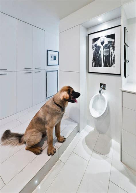 dogs going to the bathroom in the house ein pissoir zu hause installieren wichtige gr 252 nde daf 252 r