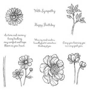 Are the other images of the bloom with hope hostess only stamp set