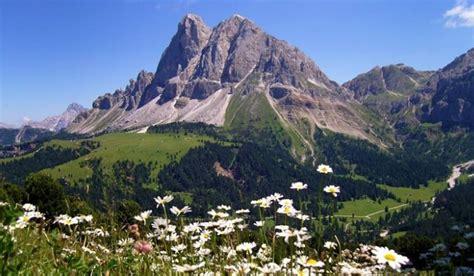 paesaggi di fiori quot una montagna di meraviglie paesaggi fiori animali quot a