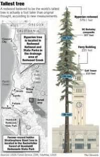 Pin location of worlds largest tree kept a secret on pinterest