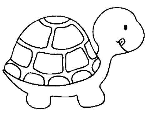 turtle colouring pages