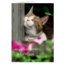 cat birthday cards zazzle