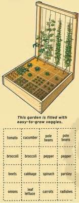1000 Ideas About Vegetable Garden Layouts On Pinterest Easy Square Foot Garden Plan