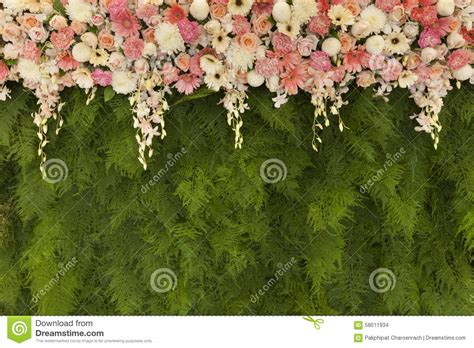 Wedding Background Wall by Beautiful Flowers With Green Fern Leaves Wall Background