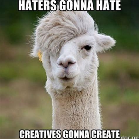 Funny Llama Memes - llama meme memes