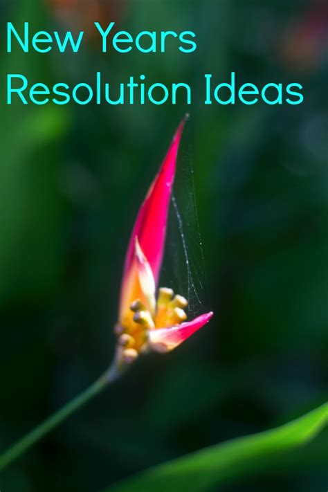 new years ideas with new years resolution ideas