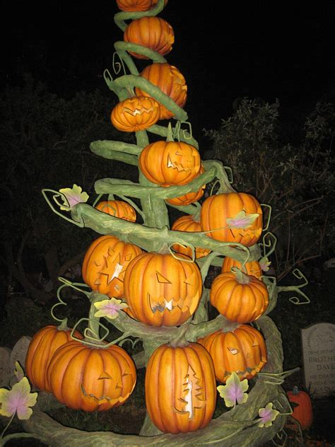halloween trees they re more than just christmas trees