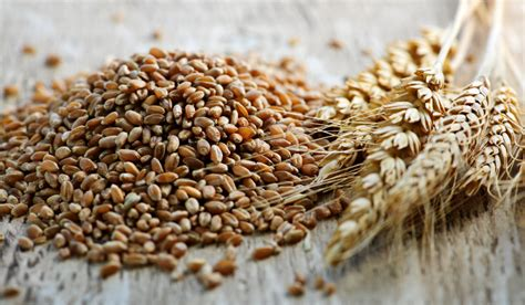 whole grains you can eat 10 of the healthiest grains you can eat