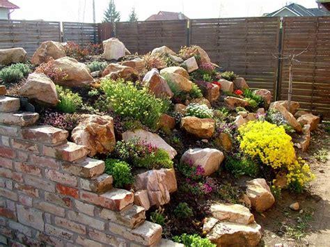 giardino roccioso fai da te giardini rocciosi fai da te giardino come realizzare