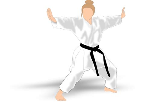 kata karate martial arts  vector graphic  pixabay