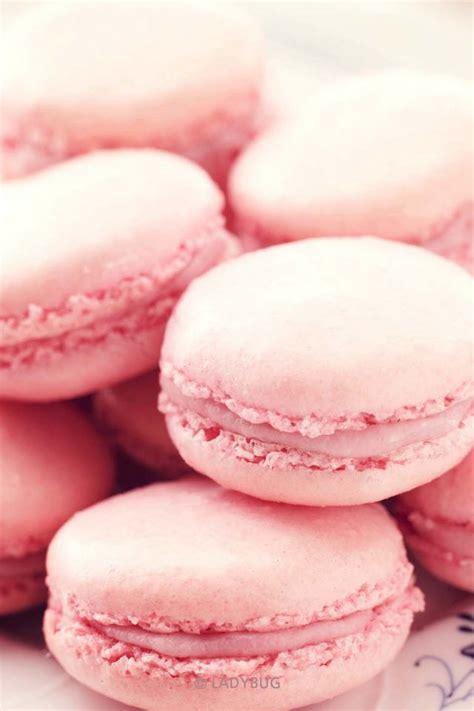 Baby Macaroon The Baby Pink Macarons Pink Stuff