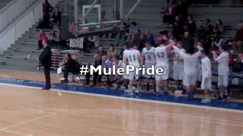 colby college bench celebrations colby college men s basketball bench celebrations youtube