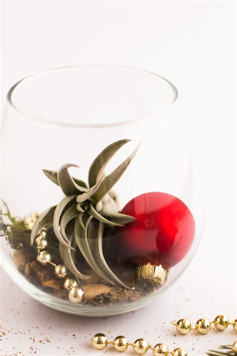holiday diy air plant gifts flax twine