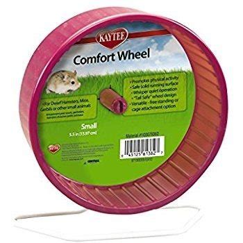 comfort wheel for hedgehogs how to own care for a hedgehog