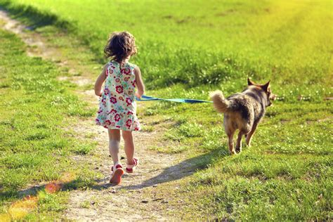 when can i start walking my puppy enterprise nation