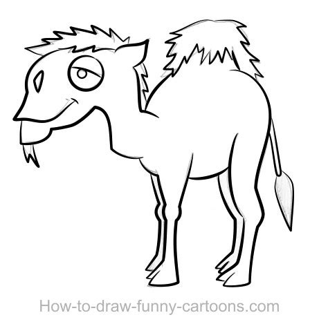 sketchbook how to draw line camel drawing sketching vector