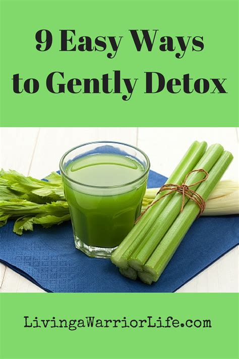 Easy Ways To Detox At Home by 9 Easy Ways To Gently Detox Living A Warrior
