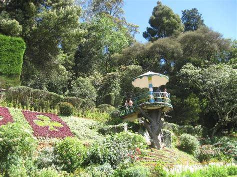 Ooty Botanical Gardens Ooty Photos Featured Images Of Ooty Tamil Nadu Tripadvisor