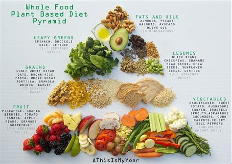 whole foods food whole food plant based diet pyramid for optimum health plantbased plant based diet