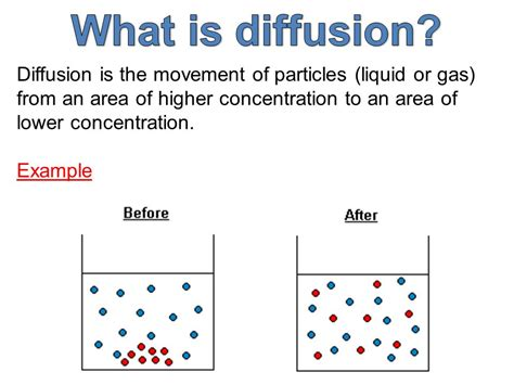 diffusion osmosis ppt video online download