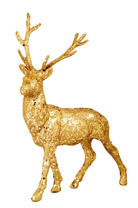 golden reindeer free stock photo public domain pictures